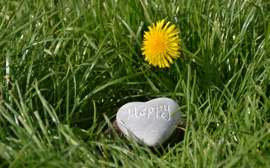 Happy May, a Guided Meditation and Much More